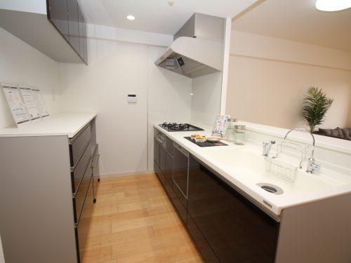 キッチンは新規交換済み!バックカウンターも設置されています!(キッチン)