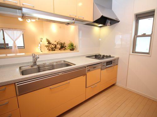 キッチンは食器洗浄乾燥機・浄水器付き(キッチン)