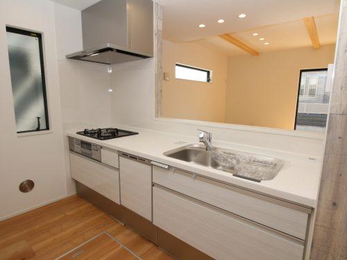 キッチンは食器洗浄乾燥機・浄水器に床下収納など設備も充実!(キッチン)
